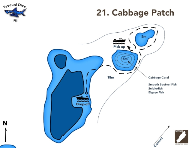 Dive Map for the Cabbage Patch    | Return to Dive Sites