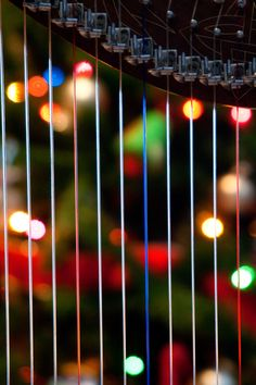 Christmas On The Harp