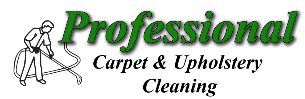 ProCleaning Logo 2014.png