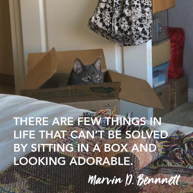 marvin thought leadership work 091418.jpg