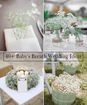 40 Ideas to Use Baby's Breath For Decorating. This little flower can add a touch of class and elegance to any wedding.