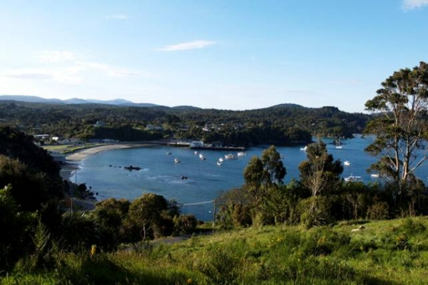 Copy of Copy of Overlooking Oban, Stewart Island