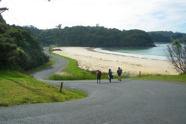 Copy of Butterfield's Beach, Stewart Island, New Zealand.