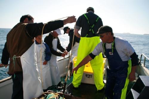 Loloma fishing charters