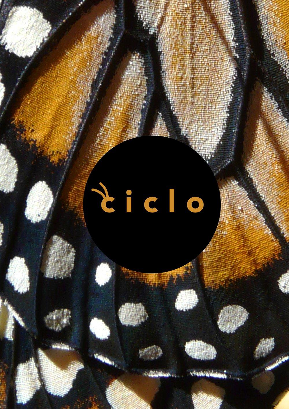 Ciclo_Posters_03.jpg
