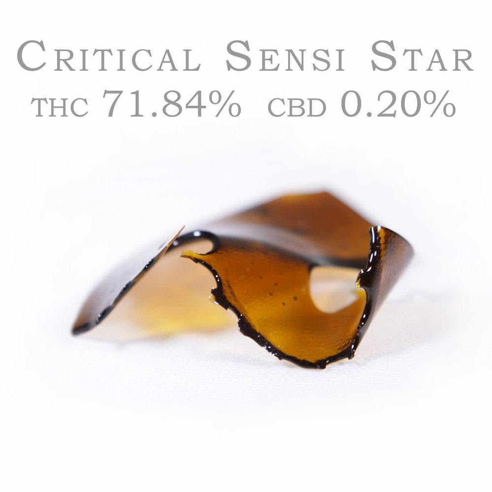 859-B_CriticalSensiStar.jpg