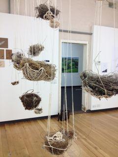 nests installation.jpg