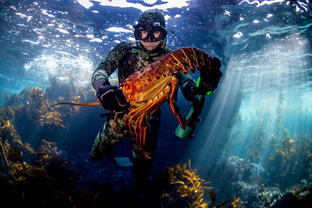 underwater_0012.jpg