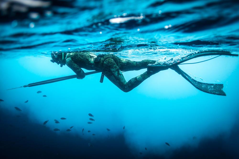 underwater_0030.jpg
