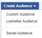 Custom Audiences 3.jpg