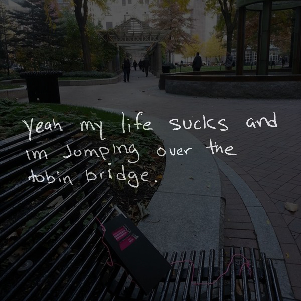 Yeah my life sucks and I'm jumping over the tobin bridge.