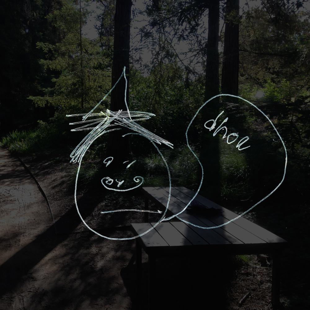 redwood 5.jpg