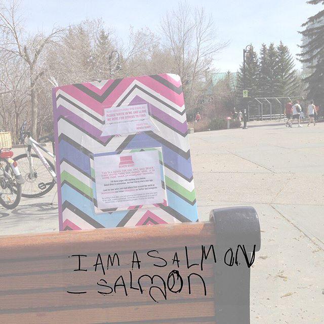 """I am a salmon - Salmon"""