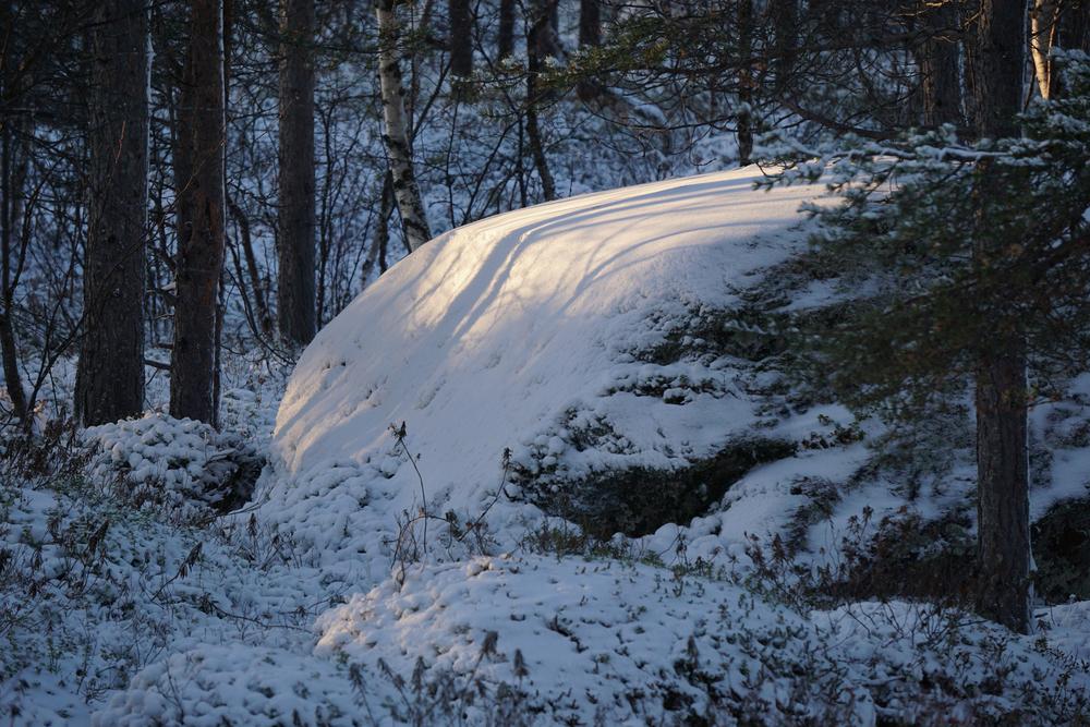 Lapland15