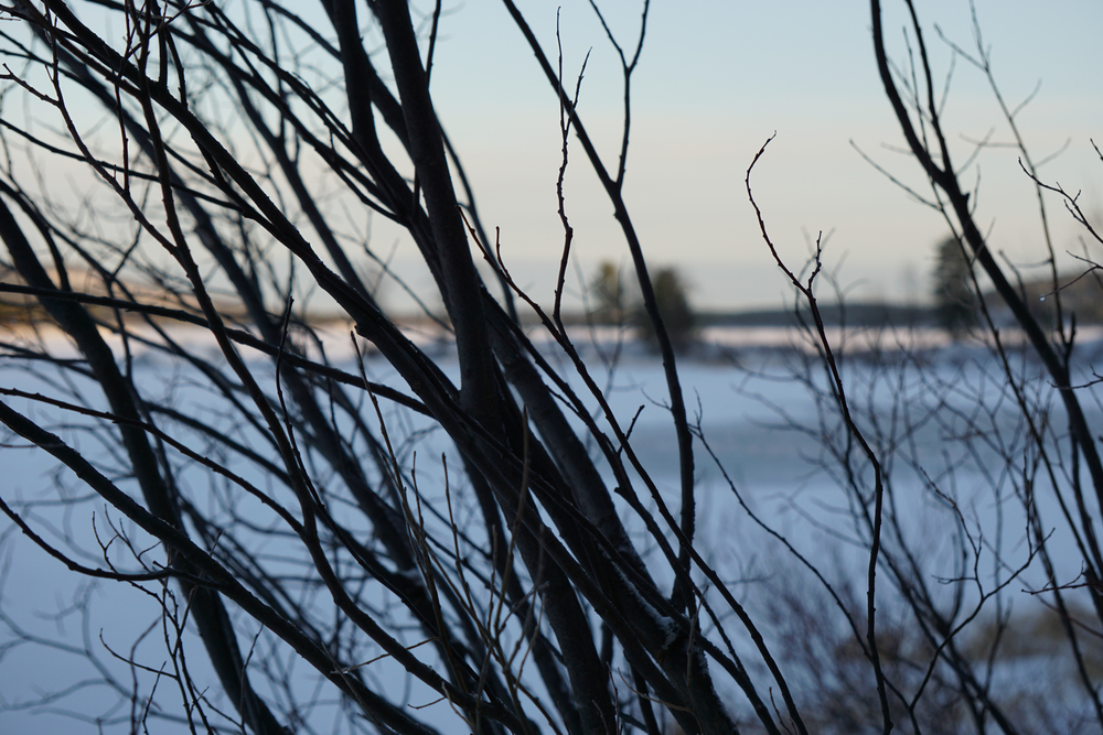 Lapland17