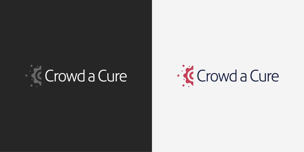 Crowdacure2.jpg