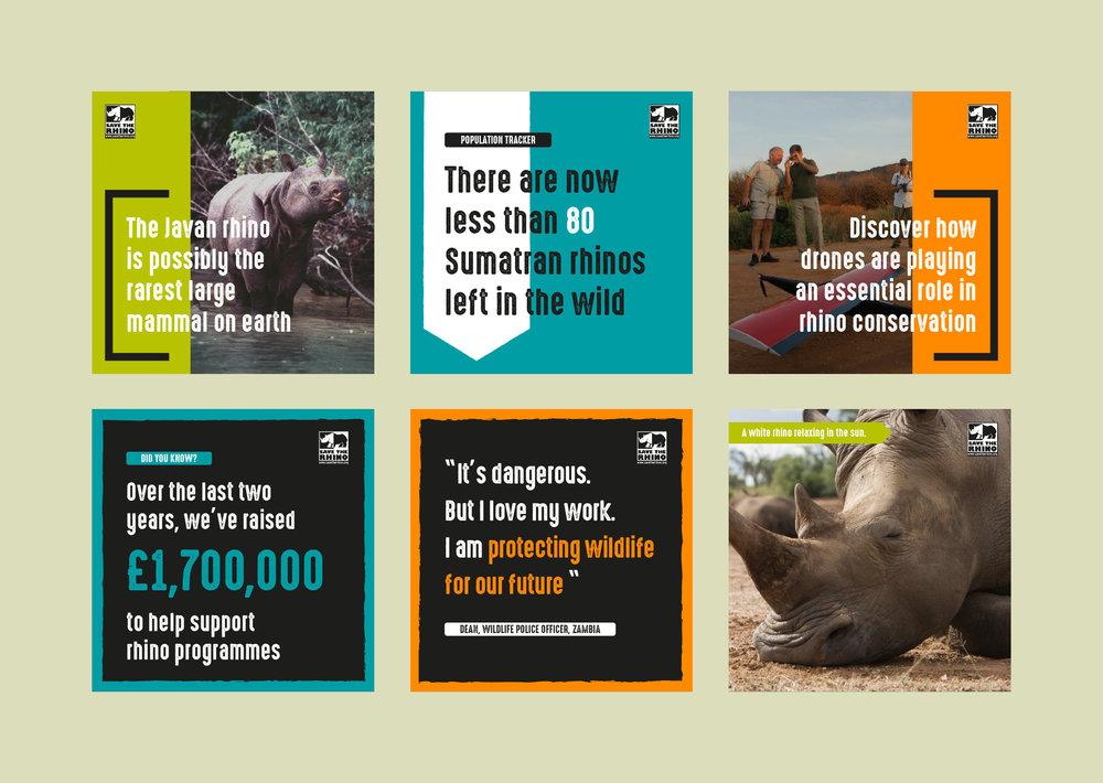 Save the Rhino Social Assets2.jpg