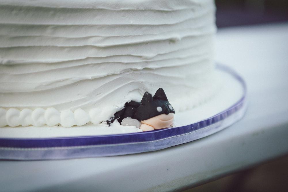 Essex Wedding Photographer Cake