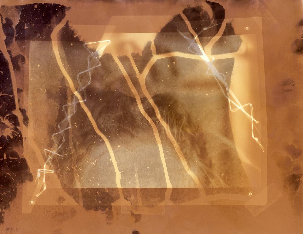 Brain Fog   Silver Gelatin  11x14, 2015