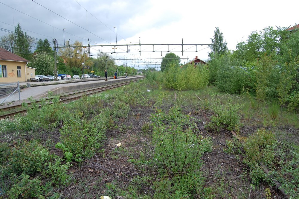 The wide unused strip of land next to the used train tracks