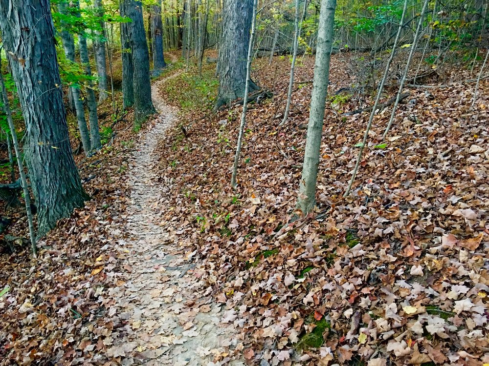 Fall is a special time of year for mountain biking in Central Ohio. Alum Creek, Phase II