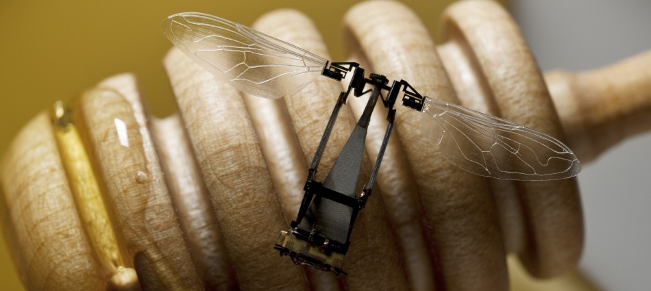 Robobees, Scientists Develop Flying Robobees to Pollinate Flowers