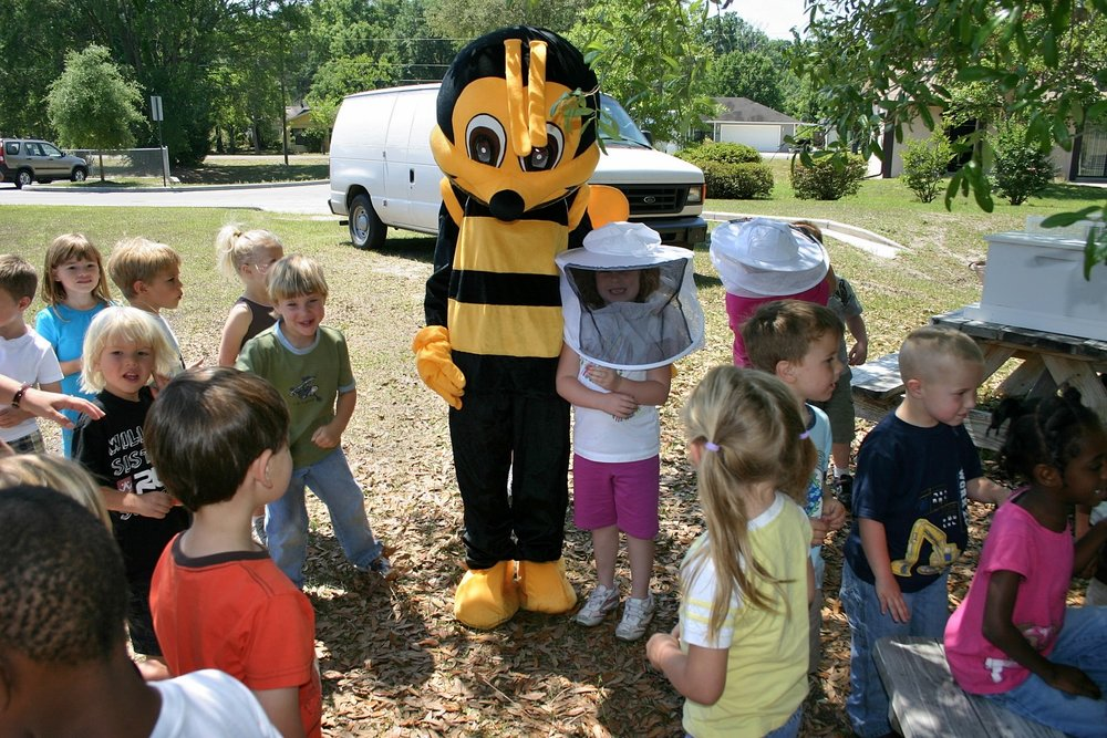IMG_0096 A Giant Bee.JPG