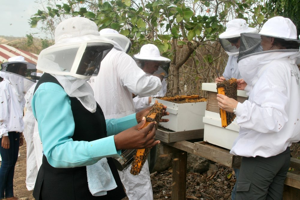 Grenada Bee College Woman Frame.jpg