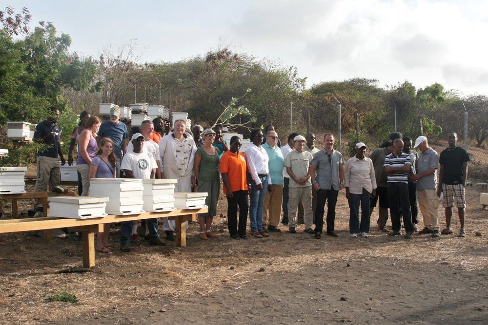 Grenada Group Hives.jpg