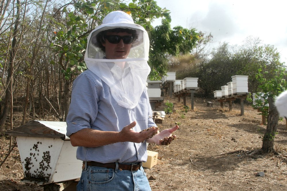 Grenada Dr Ellis Bees Hands.jpg
