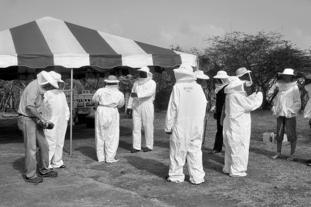 Grenada Beekeeping Workshop Group.jpg