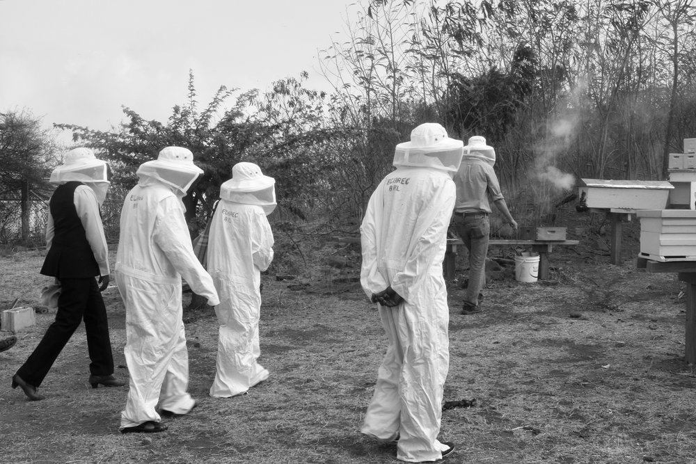 Grenada Beekeeping Workshop Group Ellis Walking.jpg