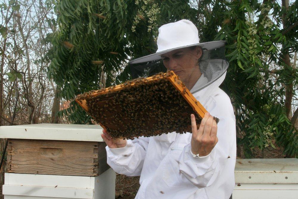 Grenada Beekeeping Workshop Woman Frame 2.jpg