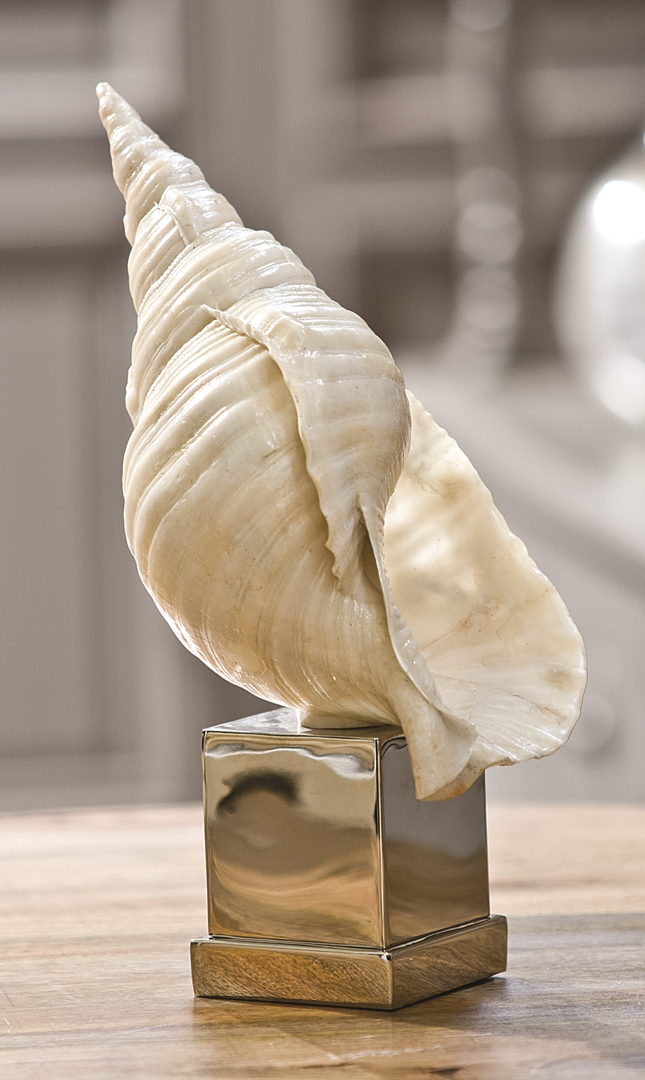 Faux Conch on Nickel Stand