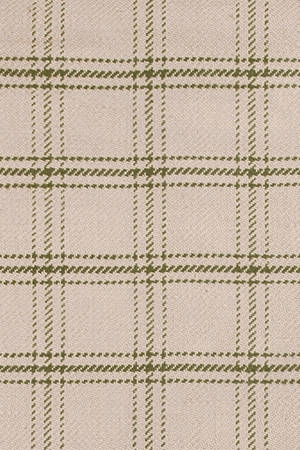 Green Plaid Jute Rugs