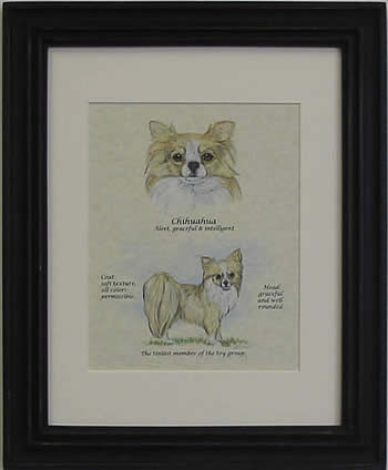 Custom Dog Print Chihuahua