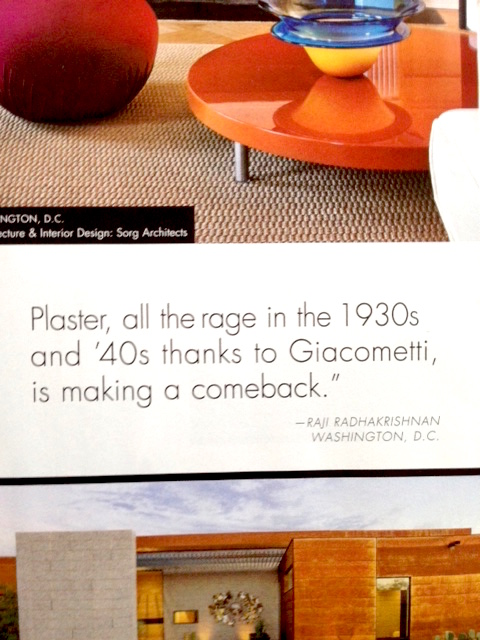 Raji RM Interior Design Washington DC New York Luxe Magazine 2015 Gold List