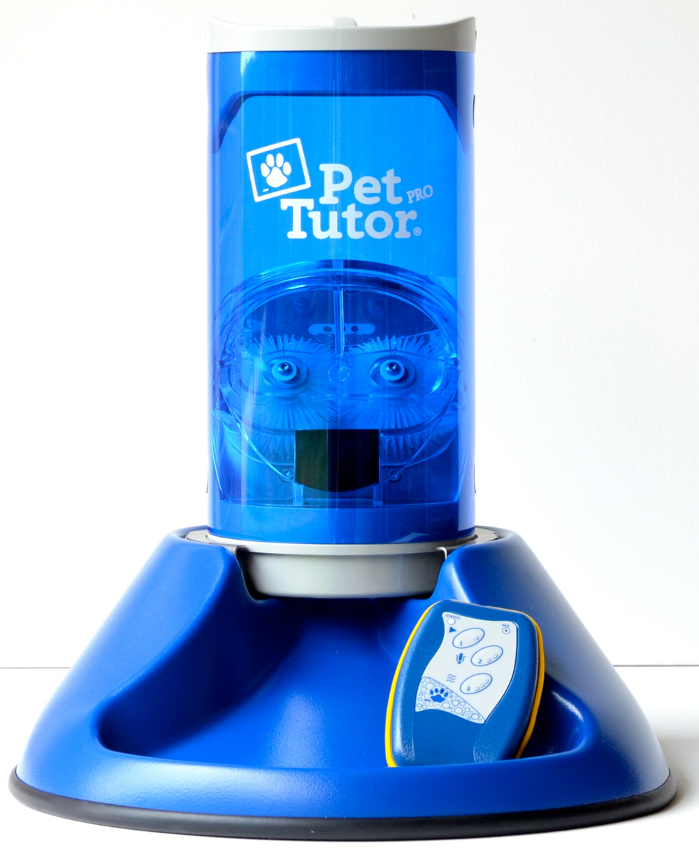 The Pet Tutor
