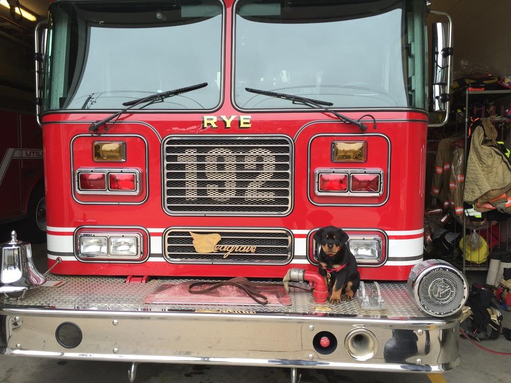 Milton Firehouse 2.jpg