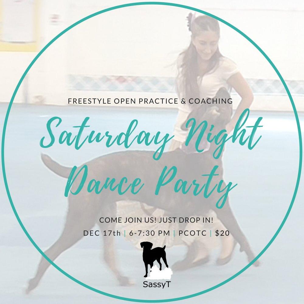 freestyle+dog+training+dance