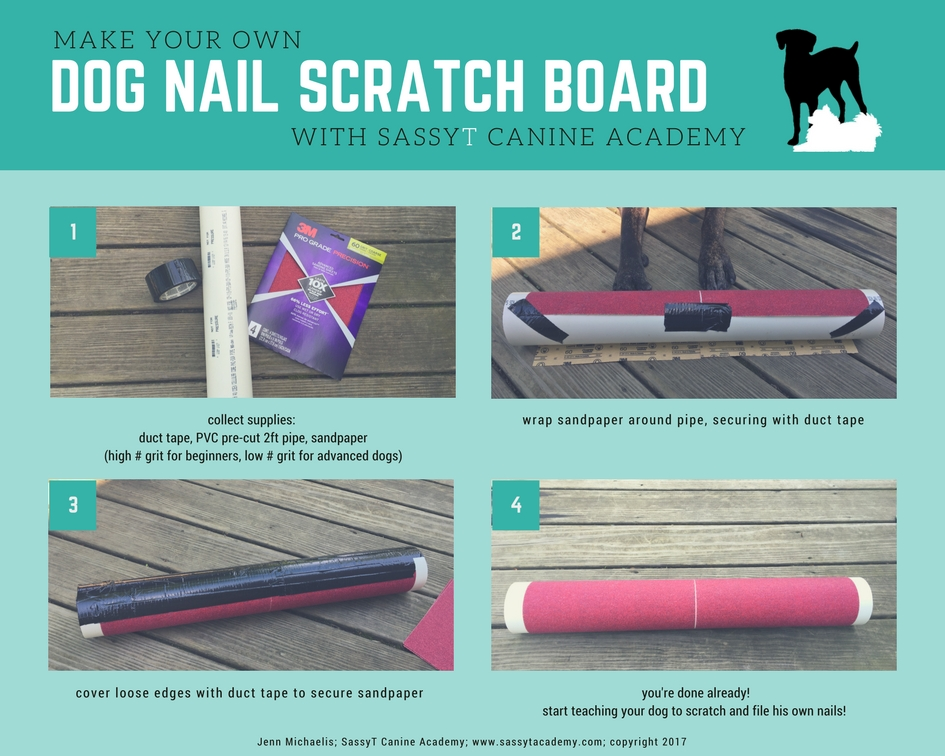 dog nail trim scratch board