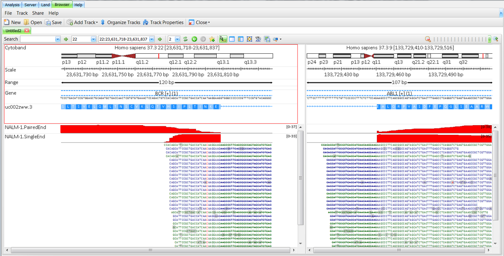 BCR-ABL1 fusion at read level in  Omicsoft Genome Browser  (two panes for fusion display).