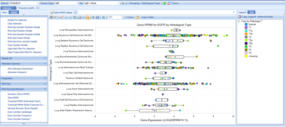 RNA-Seq Expression Pattern