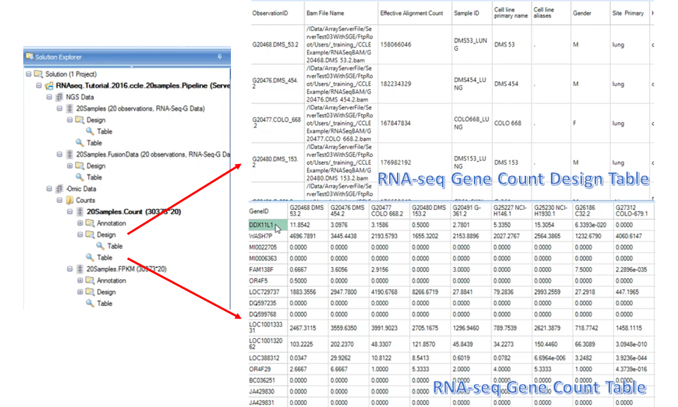 Example RNA-seq gene count table and its corresponding design table.