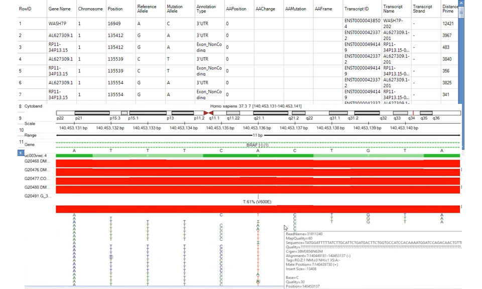 Mutation annotation report and example genome browser view of variant V600E.