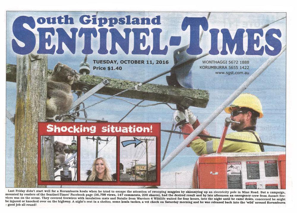 Waters story newspaper