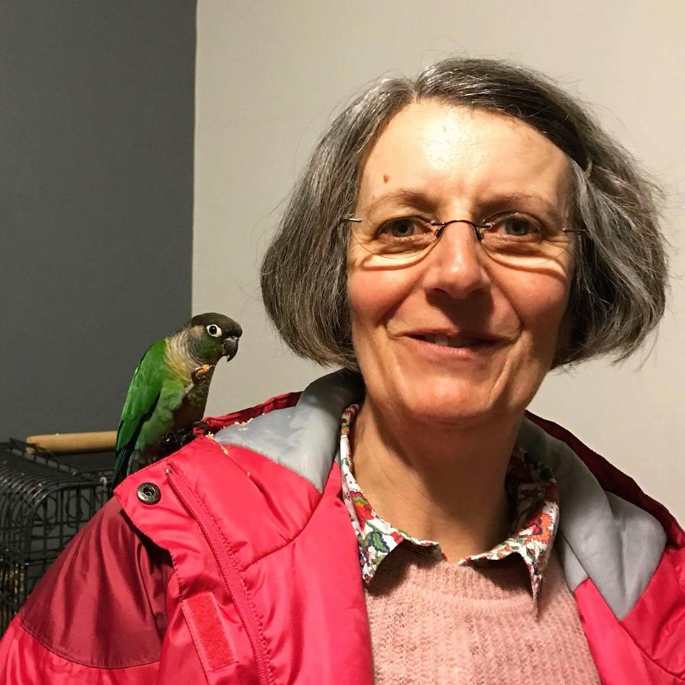 Reunited! - A happy outcome for this Conure and his family! We picked him up from the Vet as someone handed him in and within minutes of posting him on local fb pages we found his owners 😄 He also had a lady Conure and some eggs waiting for him at home too! 🐣