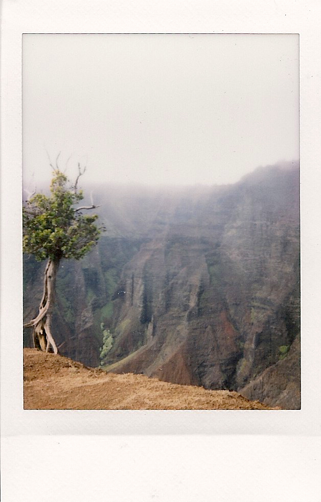 Waimea Canyon, Hawaii, 2014