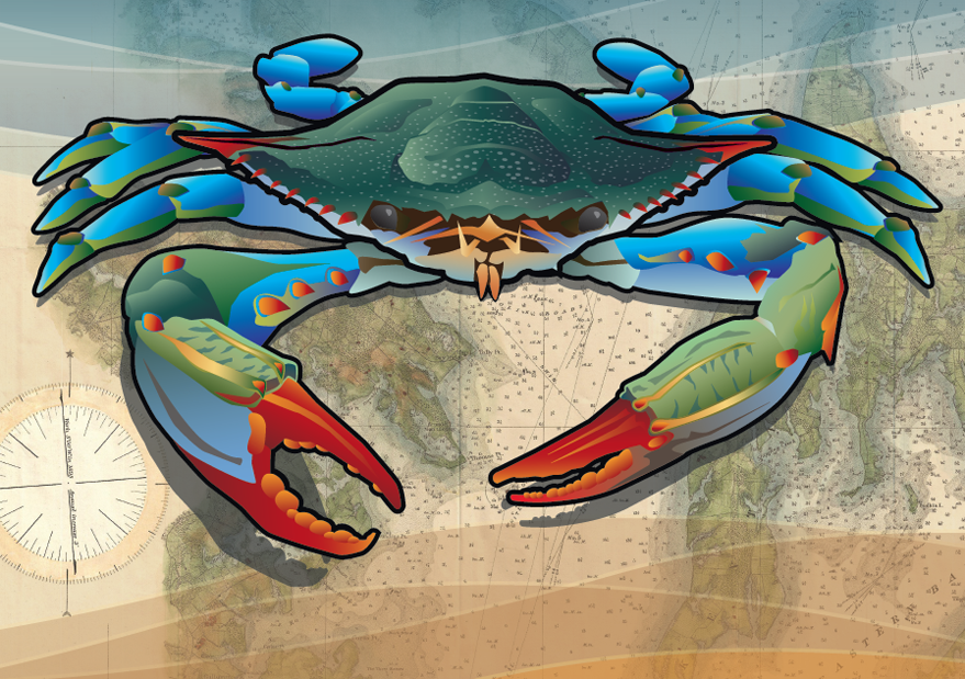 Blue crab (Costal theme)