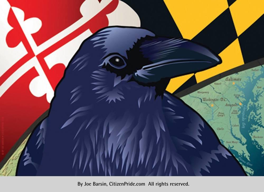 Citizen Pride's Maryland Raven